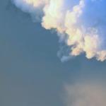 Medidas para Carbono Neutralidad